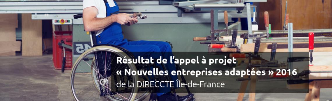 """Résultats de l'appel à projet """"Nouvelles entreprises adaptées"""" 20106"""