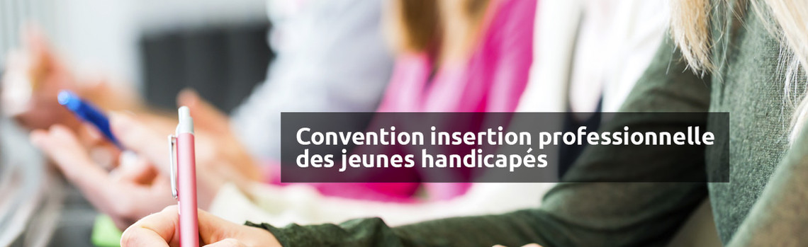 Convention Insertion Professionelle Jeunes Handicapés